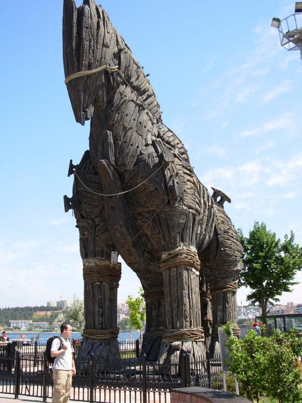 The Wooden Trojan Horse Model